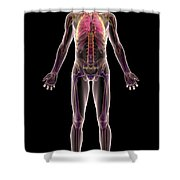 The Respiratory System Shower Curtain