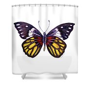 31 Delias Henningia Butterfly Shower Curtain