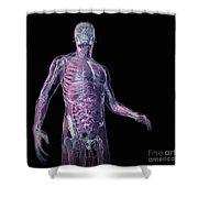 Human Anatomy Shower Curtain