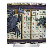 3446-colored Photo 1 Shower Curtain