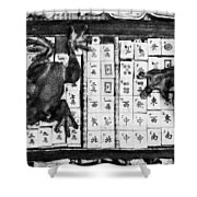 3446-graphite Drawing 2 Hp Shower Curtain