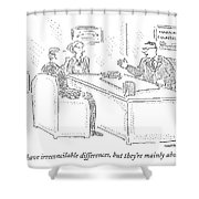 True, You Have Irreconcilable Differences, But Shower Curtain
