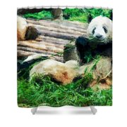 3722-panda -  Neo Shower Curtain