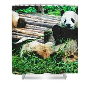 3722-panda -  Pastel Chalk 2  Shower Curtain
