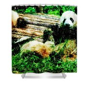 3722-panda -  Pastel Pencils Shower Curtain