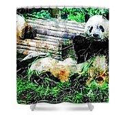 3722-panda -  Plein Air 1 Sl Shower Curtain