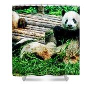 3722-panda -  Watercolor 1 Shower Curtain