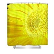 3955c Shower Curtain