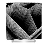 3d Abstract 15 Shower Curtain by Angelina Vick