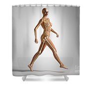 3d Rendering Of A Naked Woman Walking Shower Curtain