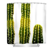 #theelectricityisgone Shower Curtain