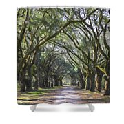 Allee Of Oaks Road Shower Curtain