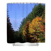 Autumn 9 Shower Curtain
