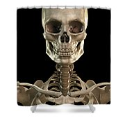 Bones Of The Head And Upper Thorax Shower Curtain