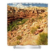 Calf Creek Falls Canyon Shower Curtain