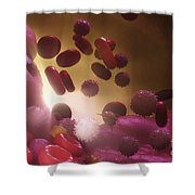 Cells Of The Immune System Shower Curtain
