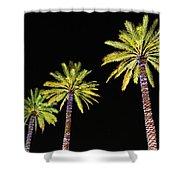 4 Christmas Palms Shower Curtain