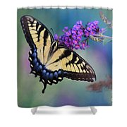 Eastern Tiger Swallowtail Butterfly On Butterfly Bush Shower Curtain