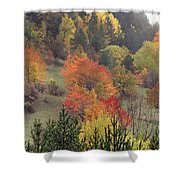 Fall Colours Shower Curtain
