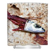Fish Bait Shower Curtain