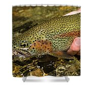Fly Fishing Patagonia, Argentina Shower Curtain
