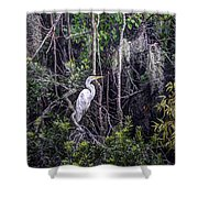 Heron Colors Shower Curtain