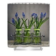Hyacinth Still Life Shower Curtain