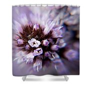 Spring Is Bursting Out All Over. Shower Curtain