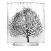 White Night Shower Curtain