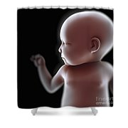 Newborn Shower Curtain
