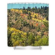 Palisades Shower Curtain