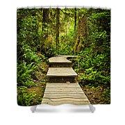 Path In Temperate Rainforest Shower Curtain