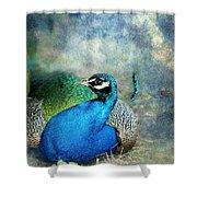 Peacock Shower Curtain