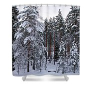 Pine Forest Winter Shower Curtain