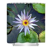 Purple Lotus Shower Curtain