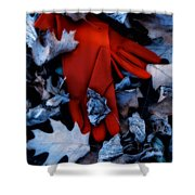 Red Gloves Shower Curtain