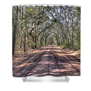 Road To Angel Oak Shower Curtain