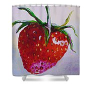 Single Strawberry Shower Curtain