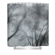 Storm Trees Shower Curtain