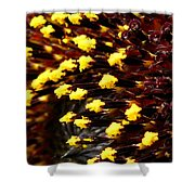 Sunflower From The Color Fashion Mix Shower Curtain