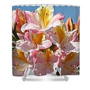 Sunny Petals Shower Curtain