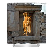 The Palaestra - Apollo Sanctuary Shower Curtain