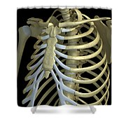 The Rib Cage Shower Curtain
