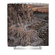 Tufa Formations, Mono Lake, Ca Shower Curtain