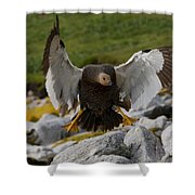 Upland Goose Shower Curtain