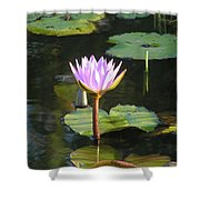Pond Of Water Lily Shower Curtain