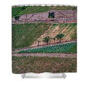Wine Of Rhine Shower Curtain