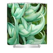 Jade Vine Shower Curtain