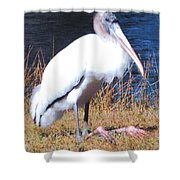 Woodstork Shower Curtain