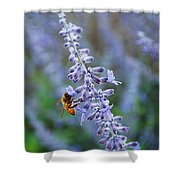 #russiansage Shower Curtain